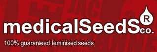 1024 Feminizada (3 Unidades) MEDICAL SEEDS